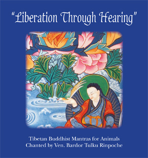 Liberation Through Hearing