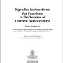Ngondro Instructions 8.5x11