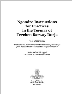Ngondro Instructions 8.5x11