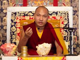 H.H. the 17th Gyalwang Karmapa